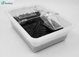 Ecobox SPH-036/037 bulk food container with scoop